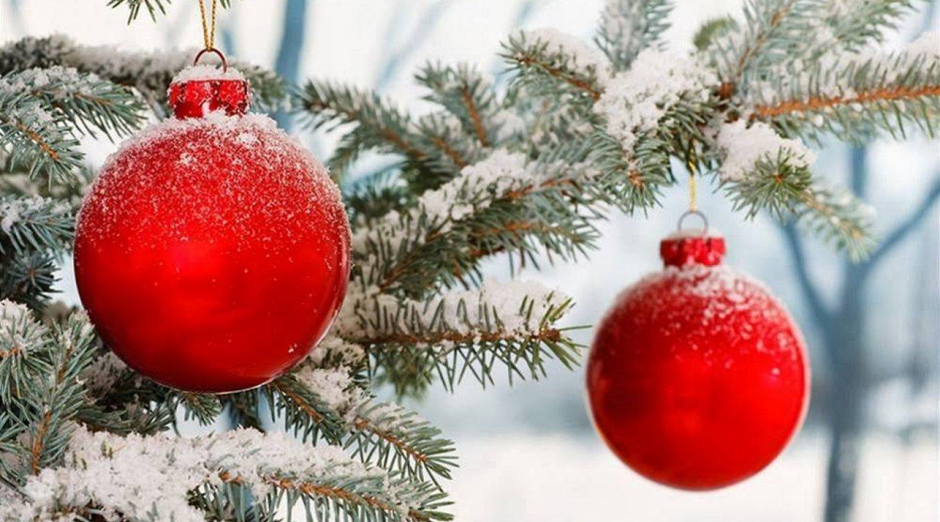 Harmonogram tréninků o vánočních prázdninách